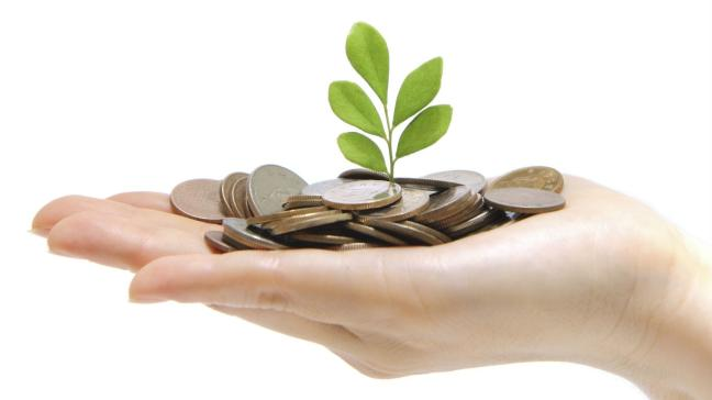 Hand holding coins with a green leafy spout