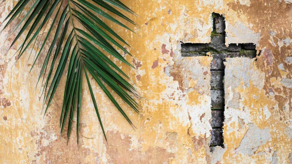 a cross carved into a stucco wall next to a palm frond