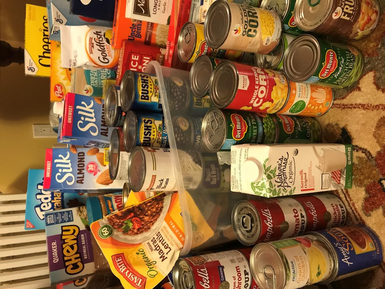 A collection of non-perishable food items