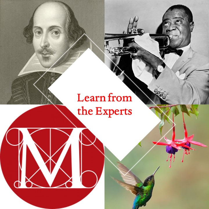 """Learn from the Experts"" with pictures of Shakespeare, Louis Armstrong, a hummingbird, and an ""M"" surrounded by design lines."